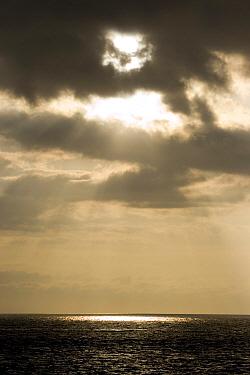Sunrise, dawn, daybreak, sunup, first light, morning, crack of dawn,sea, seaview, galapagos, islands  -  David Hosking/ FLPA