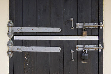 Padlock and stable tack room door hinges, Suffolk, England  -  David Hosking/ FLPA