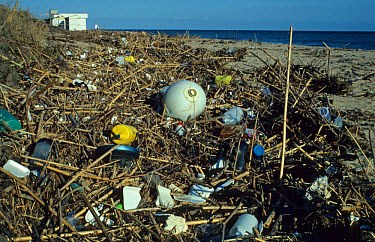 Sea pollution, rubbish on beach, Spain  -  B. Borrell Casals/ FLPA