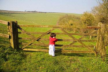 Child standing by field gate, sheep pasture in background, Compton Valence, Dorset, England  -  Nicholas and Sherry Lu Aldridge/