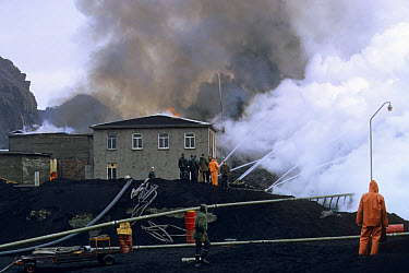 Volcanic eruption, buildings engulfed in lava and ash, slowing lava flow with water, Eldfell Volcano, Heimaey, Westmann Isles, Iceland,  -  S Jonasson/ FLPA