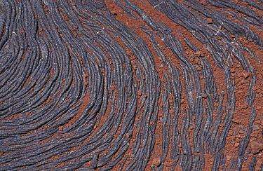 Rocks, Lava Lava detail,Sullivan Bay,Galapagos G- org  -  Catherine Mullen/ FLPA