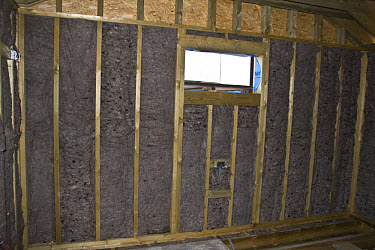 Using processed sheep's wool to insulate cavities in a new eco friendly home build  -  David Hosking/ FLPA