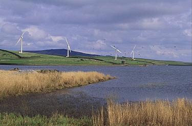 Power Wind Chelker Wind Farm,North Yorkshire Mast ft high,Blades ft  -  Catherine Mullen/ FLPA