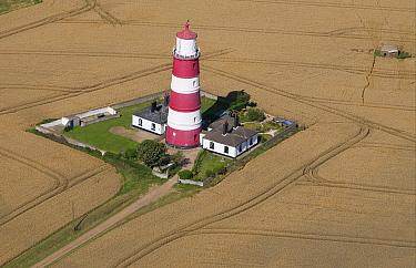 Aerial view of lighthouse, wheat field and World War Two pillbox, Happisburgh, Norfolk, England  -  David Burton/ FLPA
