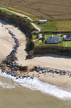 Aerial view of failed sea defences and cliff erosion, Happisburgh, Norfolk, England  -  David Burton/ FLPA