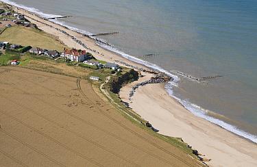 Aerial view of field, houses, coastal cliff erosion and sea defences, Happisburgh, Norfolk, England  -  David Burton/ FLPA
