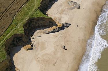 Aerial view of coastal cliff erosion, Happisburgh, Norfolk, England  -  David Burton/ FLPA