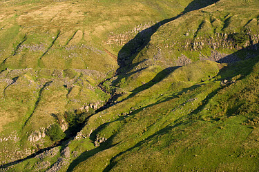 View of limestone rocks on fellside, from Buttertubs Pass, Swaledale, Yorkshire Dales National Park, Yorkshire, England  -  Wayne Hutchinson/ FLPA