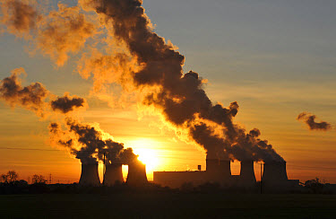 Coal-fired power station at sunset, cooling towers billowing out steam, Drax Power Station, Goole, North Humberside, Yorkshire, England  -  John Eveson/ FLPA