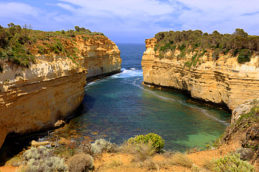 View of limestone sea cliffs and gorge, Loch Ard Gorge, Port Campbell National Park, Great Ocean Road, Victoria, Australia  -  Jurgen and Christine Sohns/ FLPA