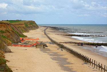 Happisburgh archaeological dig, view of site on beach, at oldest human site north of Alps, Happisburgh, Norfolk, England, june  -  Neil Bowman/ FLPA