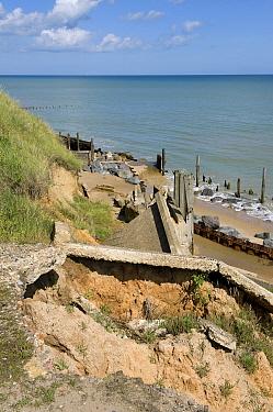 Coastal cliff erosion, collapsed cliff path, Happisburgh, Norfolk, England  -  David Burton/ FLPA