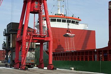 Unloading % nitrogen granular fertilizer from 'Ofmar' Egyptian cargo vessel, Avonmouth Docks, Port of Bristol, England  -  John Eveson/ FLPA