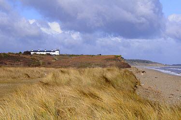 View of coastal heathland and beach habitat, Dunwich Heath, Suffolk, England, february  -  Gary K Smith/ FLPA