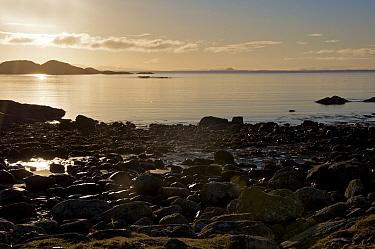 Sunset over coast, view towards Treshnish Isles, Coll, Inner Hebrides, Scotland, winter  -  Michael Durham/ FLPA