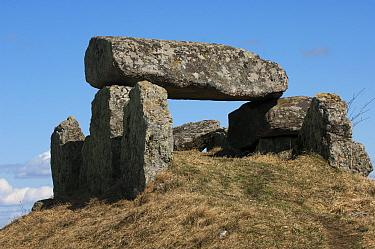 Luttra Ganggrift' Megalithic tomb, Falbygden, Vastergotland, Sweden, spring  -  Bjorn Ullhagen/ FLPA