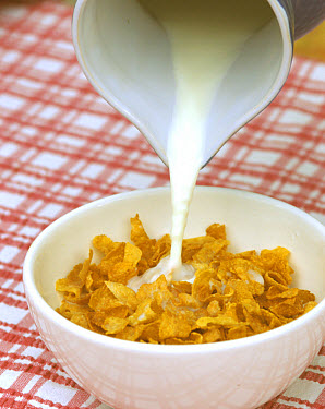 Pouring milk onto cornflakes, breakfast cereal, in a bowl  -  Nigel Cattlin/ FLPA