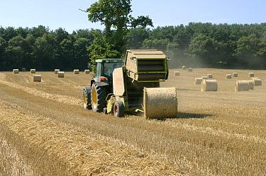 Claas round baler and John Deere tractor baling wheat straw  -  Nigel Cattlin/ FLPA