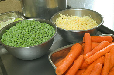 Vegetables in stainless steel containers being prepared in commercial kitchen  -  Nigel Cattlin/ FLPA