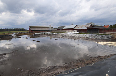 Slurry pond and farm buildings, Sweden, may  -  Bjorn Ullhagen/ FLPA