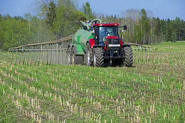 Case tractor with Samson vacuum slurry tanker and slurry injector, injecting slurry into stubble field, Sweden, may  -  Bjorn Ullhagen/ FLPA