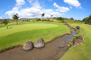 Stream running by practice green on golf course, Le Telfair Hotel and Golf Course, Bel Ombre, Southwest Mauritius  -  Colin Marshall/ FLPA