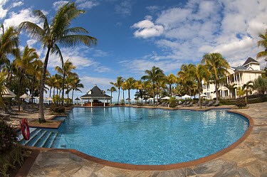 Swimming pool with palm trees and hotel building, Le Telfair Hotel, Bel Ombre, Southwest Mauritius  -  Colin Marshall/ FLPA