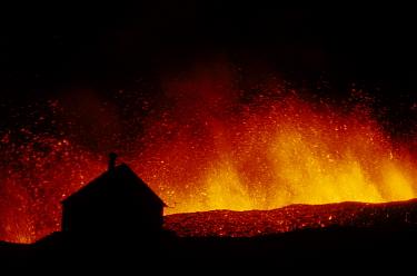 Volcanic eruption, erupting lava with town house silhouetted, Eldfell Volcano, Heimaey, Westmann Isles, Iceland,  -  S Jonasson/ FLPA
