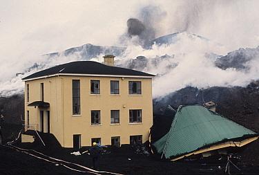Destruction of town following eruption of volcano, buildings engulfed in lava, Eldfell Volcano, Heimaey, Westmann Isles, Iceland,  -  S Jonasson/ FLPA