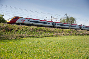 Virgin railway train travelling along bank in farmland, Wrinehill, Staffordshire, England, may  -  John Eveson/ FLPA