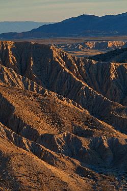View of badlands habitat, Carrizo Badlands, Anza-Borrego Desert State Park, California, U.S.A., february  -  Mark Newman/ FLPA