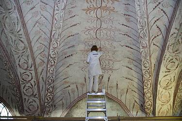 Curator repairing painting on church ceiling, Tierp, Uppsala County, Uppland, Sweden, march  -  Bjorn Ullhagen/ FLPA