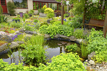 View of garden with pond, pergola, benches and house in background, Essex, England  -  Bill Coster/ FLPA