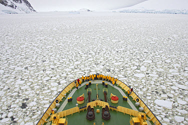 Kapitan Khlebnikov' icebreaker with tourists, breaking through pack ice, Antarctica  -  Bill Coster/ FLPA