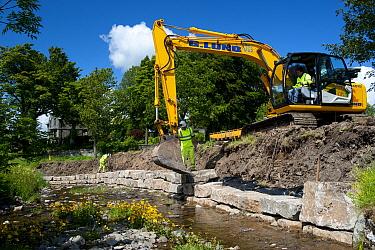 Excavator improving stream bank to help prevent flooding, Cumbria, England, june  -  Wayne Hutchinson/ FLPA