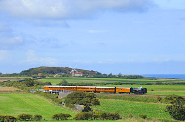 Steam railway, tender 'Hunslet Austerity ', train with carriages, with rail bridge and distant windmill, 'Poppy Line' coastal steam railway line, Weybourne, North Norfolk, England, september  -  Gary K Smith/ FLPA