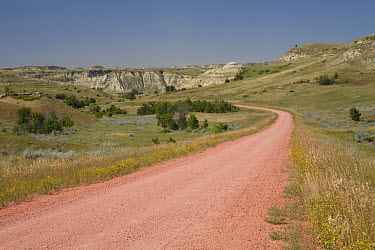 View of red scoria road in ranch country, Badlands, North Dakota, U.S.A., august  -  Daphne Kinzler/ FLPA