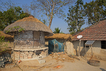 Old-fashioned grain store with modern satellite dish and solar panel, Sundarbans, Ganges Delta, West Bengal, India  -  Roger Tidman/ FLPA