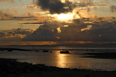 View of boats on intertidal mudflats habitat at sunset, looking towards Grange-over-sands in Cumbria from Morecambe, Morecambe Bay, Lancashire, England, september  -  Richard Becker/ FLPA