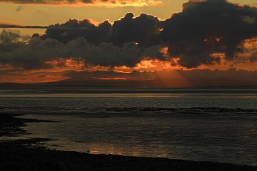 View of intertidal mudflats habitat at sunset, looking towards Grange-over-sands in Cumbria from Morecambe, Morecambe Bay, Lancashire, England, september  -  Richard Becker/ FLPA