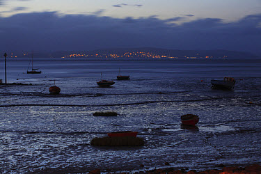 View of boats on intertidal mudflats habitat during low tide at night, looking towards Grange-over-sands in Cumbria from Morecambe, Morecambe Bay, Lancashire, England, september  -  Richard Becker/ FLPA