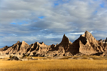 View of prairie and eroded rock formations, Badlands National Park, South Dakota, U.S.A., september  -  Mark Newman/ FLPA