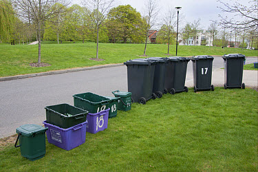 Domestic refuse and recycling, waiting for collection on housing estate, Guildford, Surrey, England, april  -  Angela Hampton/ FLPA