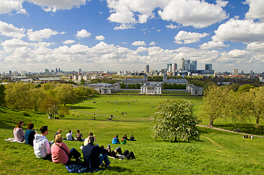 People sitting in park, visitors admiring view of National Maritime Museum, Queen's House, Royal Naval College and across River Thames to Docklands, Greenwich Park, Greenwich, London, England, april  -  Dave Pressland/ FLPA