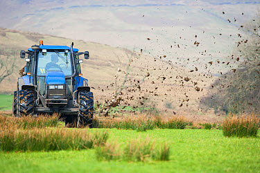 New Holland TS tractor with muckspreader, spreading farmyard manure on grassland, Whitewell, Lancashire, England, march  -  John Eveson/ FLPA