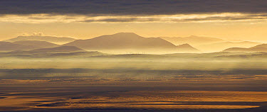View across bay towards distant windfarm and hills at sunrise, looking towards Lake District (Cumbria, England), Solway Firth, Criffel, Galloway, Dumfries and Galloway, Scotland, january  -  Michael Durham/ FLPA