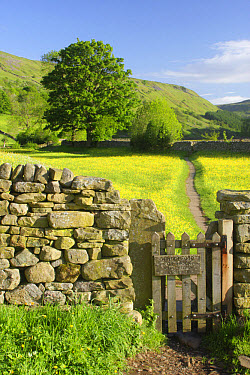 Wooden gate in drystone wall, with 'Winter Food For Stock, Please Keep In Single File' sign, leading to path through wildflower meadow, Muker, Swaledale, Yorkshire Dales National Park, North Yorkshire...  -  Paul Miguel/ FLPA