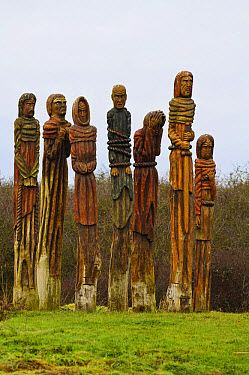 Carved wooden figures commemorating Peasants' Revolt, sculpted by Robert Koenig and part of Wat Tyler sculpture trail, Wat Tyler Country Park, Essex, England, january  -  Dave Pressland/ FLPA