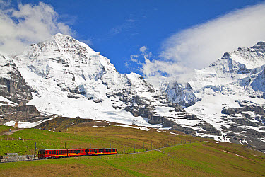 Jungfraubahn train leaving Kleine Scheidegg towards Jungfraujoch, Monch mountain in background, Bernese Alps, Switzerland, June  -  Dickie Duckett/ FLPA